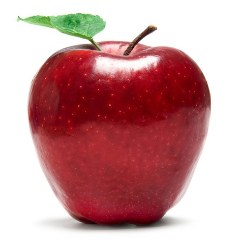 Eden Tree - Large Apple (1 pk)