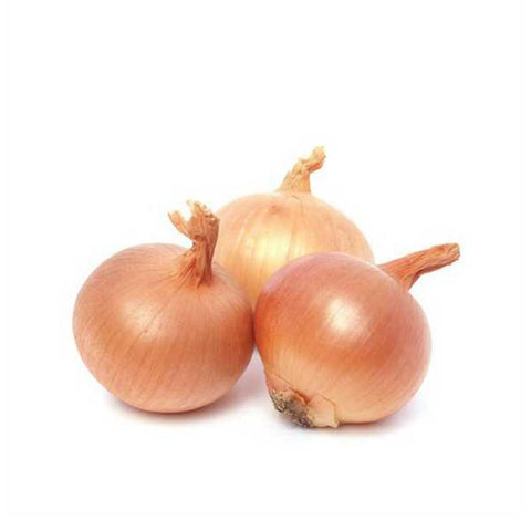 Eden Tree Onion Holland (1kg)