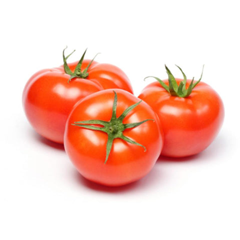Eden Tree Tomatoes (medium) - 1pk
