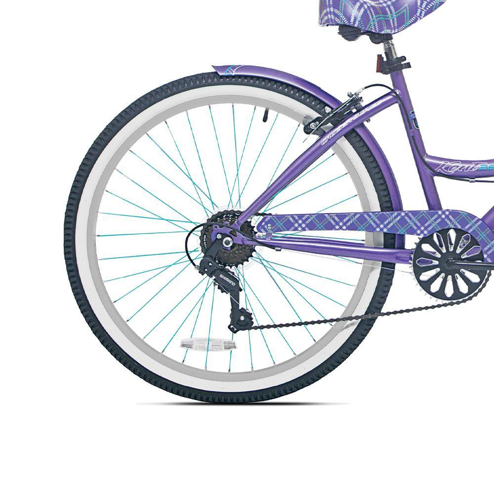 Purple Rear Fender with Blue Stripe