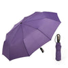 Self-dry Folding Umbrella