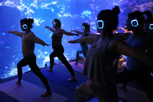 Yoga at the aquarium, anyone? Silent disco?