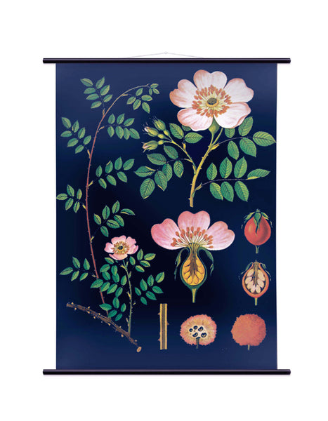 DOG ROSE WALL CHART - SMALL