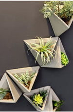 Hernan - Modern Cement Triangle Wall Planter - MODERNY