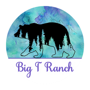 Big T Ranch Colorado