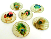 Load image into Gallery viewer, Feather Magnets - Peacock Feather Magnet - Peacock Favor -Free U.S. Shipping -  Peacock Wedding - Set of 6 - 1 Inch Domed Glass Circles