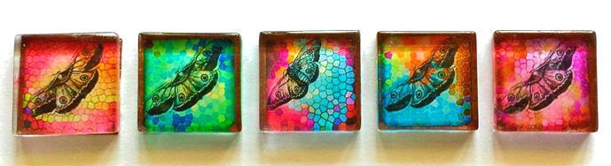Glass Magnets - Butterflies - Set of 5 - 1 Inch Glass Squares - Free U.S. Shipping - Gift for Woman, Mom, Sister Gift