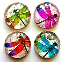 Load image into Gallery viewer, Magnets - Dragonflies - Dragonfly - Set of 4 - 1 Inch Domed Glass Circles - Free U.S. Shipping