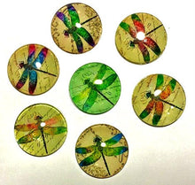 Load image into Gallery viewer, Dragonfly Magnets - Dragonflies - Set of 7 -Free U.S. Shipping -   1 Inch Domed Glass Circles - Gardener Gift, Grandma, Mom, Niece