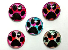 Load image into Gallery viewer, Magnets - Paw Prints - Free U.S. Shipping - Dog Cat Paws - Gift for Pet Owner, Vet, Cat Owner - Set of 5 - 1 Inch Domed Glass Circles