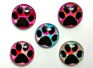 Magnets - Paw Prints - Free U.S. Shipping - Dog Cat Paws - Gift for Pet Owner, Vet, Cat Owner - Set of 5 - 1 Inch Domed Glass Circles
