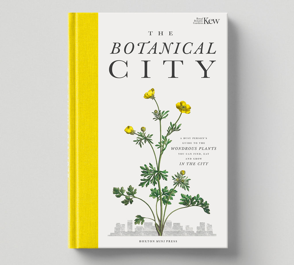PRE-ORDER: Print (B) + Book: 'The Botanical City' + your name in the book