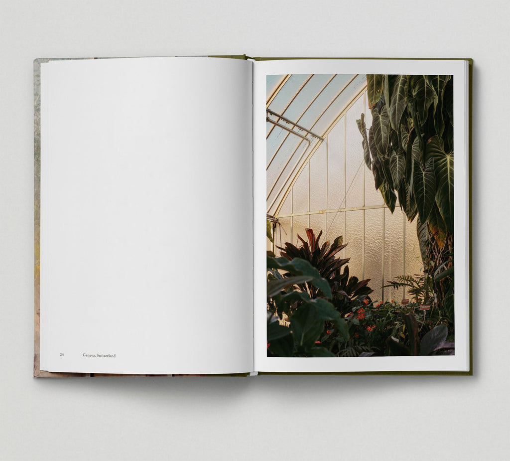 Botanical (Book 6: Tales from the City)