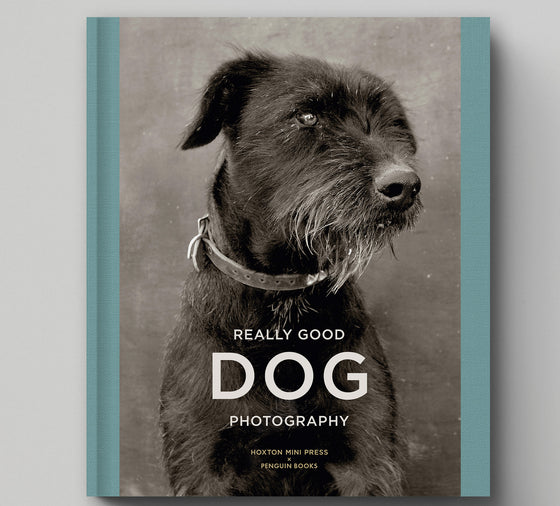 PRE-ORDER: Really Good Dog Photography