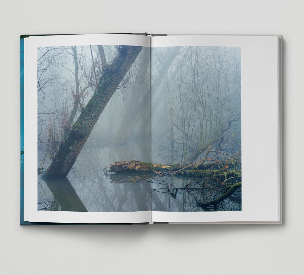 Collector's Edition + Print: Along the Hackney Canal