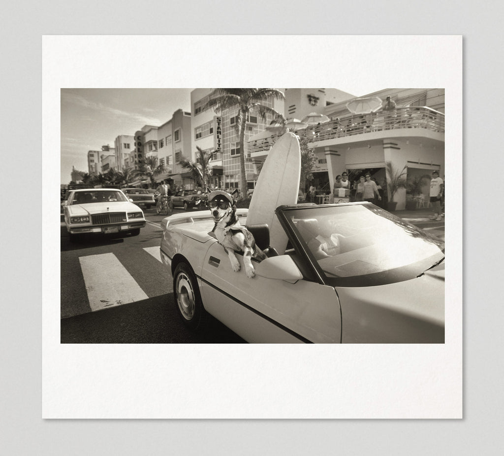 Limited edition print (C) + signed book: 'Miami Beach'