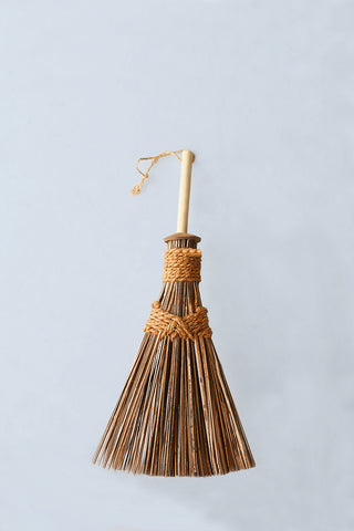 The Ultimate Coconut Whisk Broom