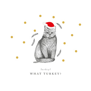 What Turkey Christmas Cards (Pack of 10)