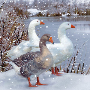 Wandering Geese Christmas Cards (Pack of 10)