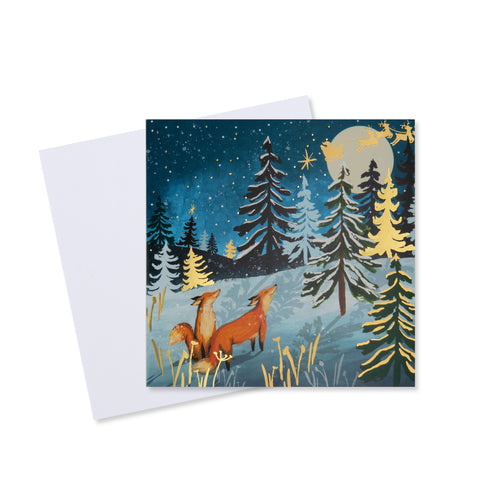 Christmas Cards Macmillan Cancer Support Shop