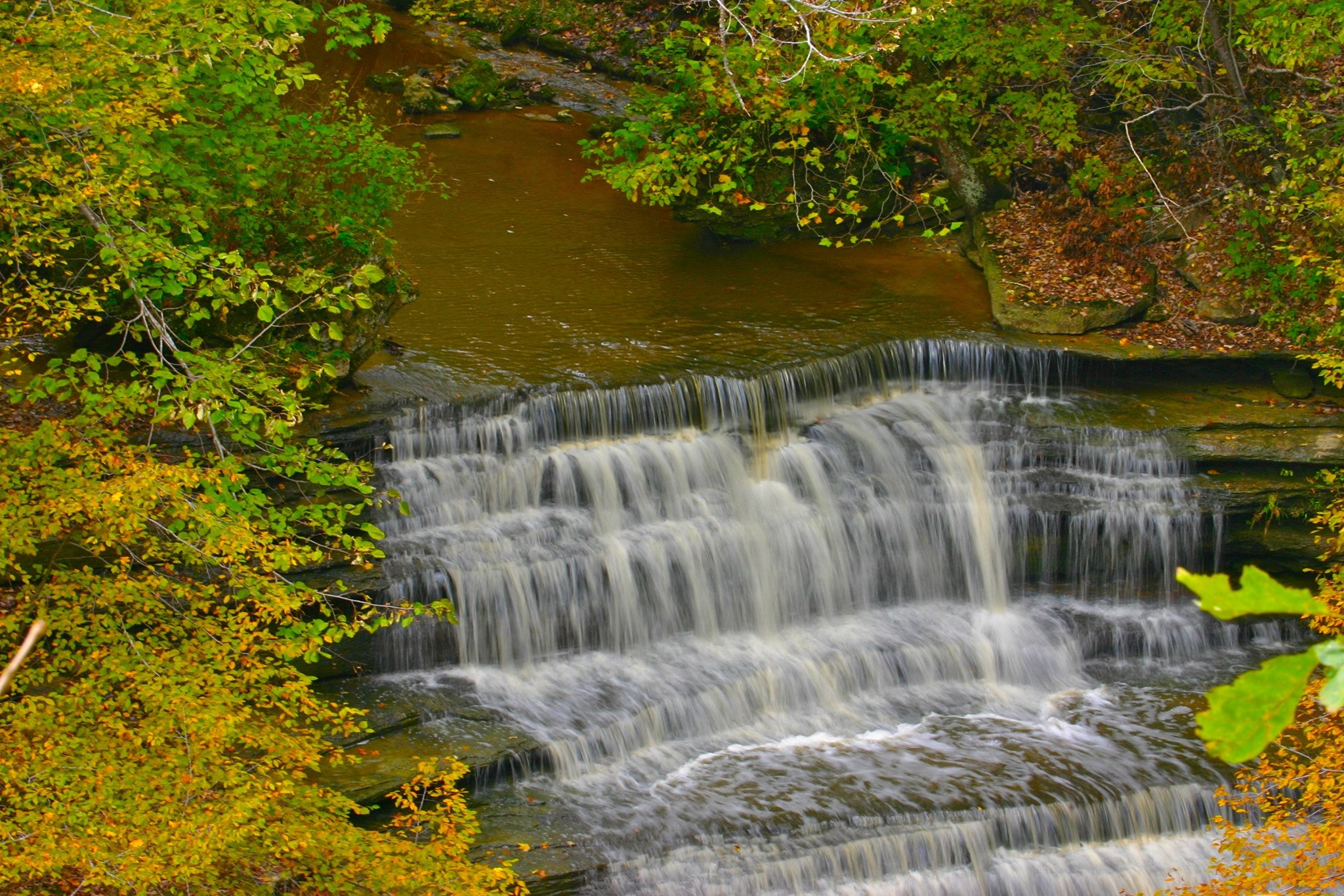 cliffy falls state park along the Indiana Birding Trail