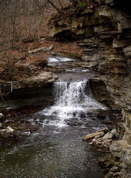 Mccormick's creek state park on the Indiana birding trail