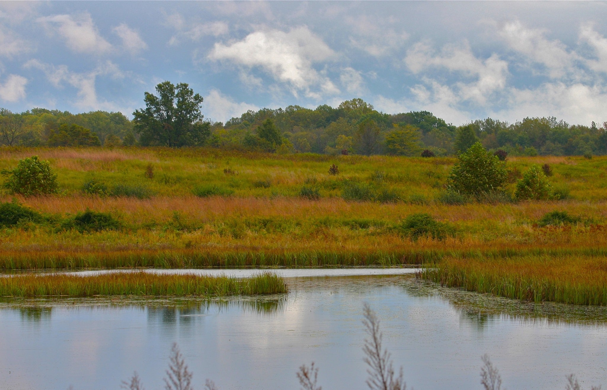 muscatatuck national wildlife refuge birding trail