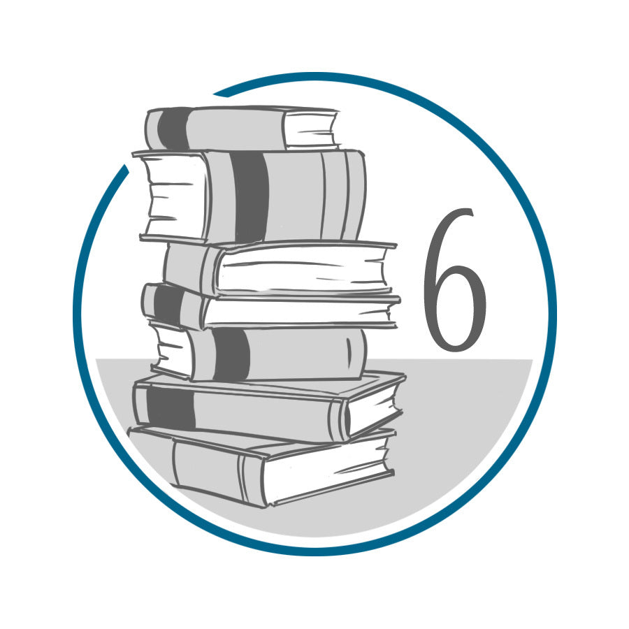 6th Grade Literature Package (13 Chapter Books)