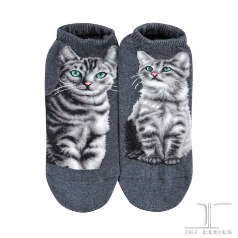 Cat Ankles - American Shorthair Gray