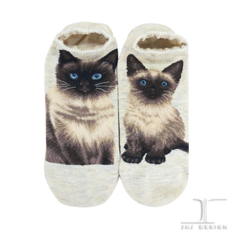 Cat Ankles - Himalayan Oatmeal