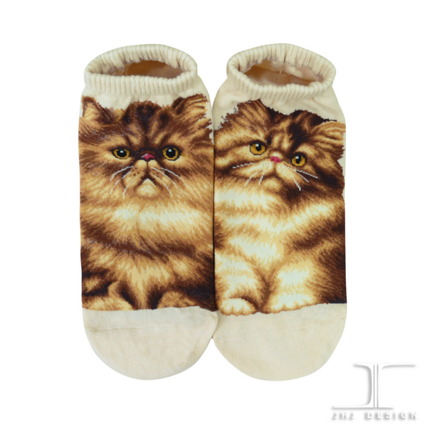 Cat Ankles - Persian Cream