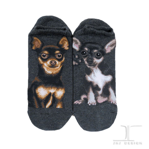Dogs Ankles - Chihuahua