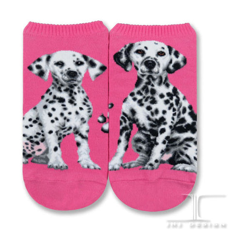Dogs Ankles - Dalmation One Size
