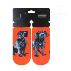 Dogs Ankles - Great dane One Size