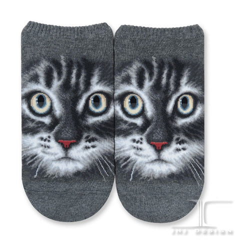 Cat Ankles - American short hair face
