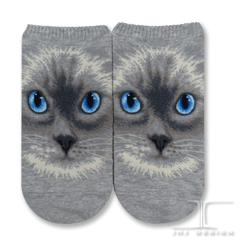 Cat Ankles - Ragdoll cat face