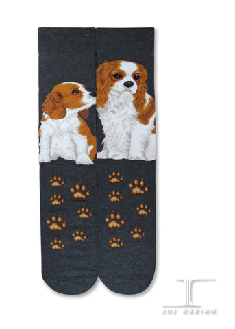 Dogs - Cavalier King Charles Men Size