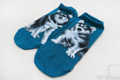 Dogs Ankles - Huskies