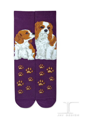 Dogs - Cavslier King Charles One Size