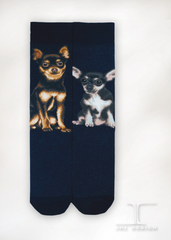 Dogs - Chihuahua One Size