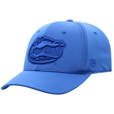 Florida Gators Color Up Hat