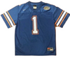 Florida Gators Youth #1 Nike Jersey Screen Print