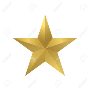 Professional Business Start-Up Package - Gold Star