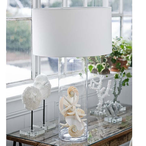 Display Glass Table Lamp