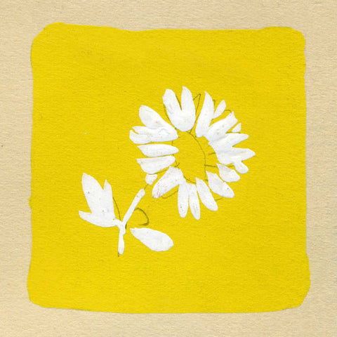 Art - Paule Marrot -White & Yellow Flowers 2 & 6