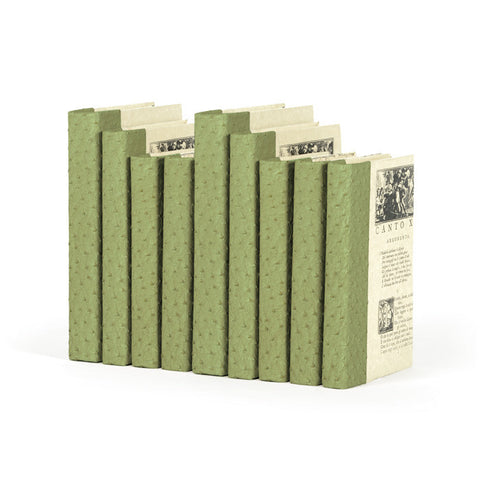 Green Ostrich Books