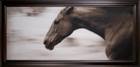 Gallop Fine Art - Natural Curiosities
