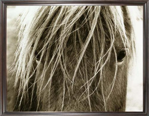 Blonde Horse Art - Large Photography