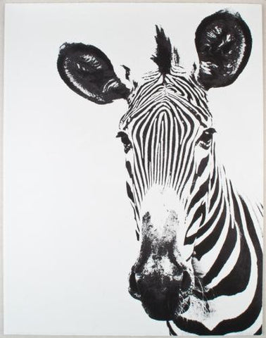 Tylinek Zebra Art - Natural Curiosities
