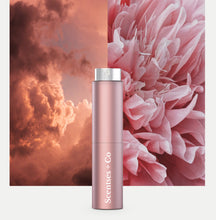 Load image into Gallery viewer, Travel Case — Rosé Pink